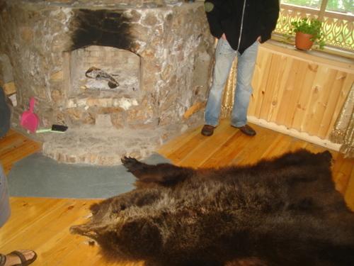 Bearskin_rug