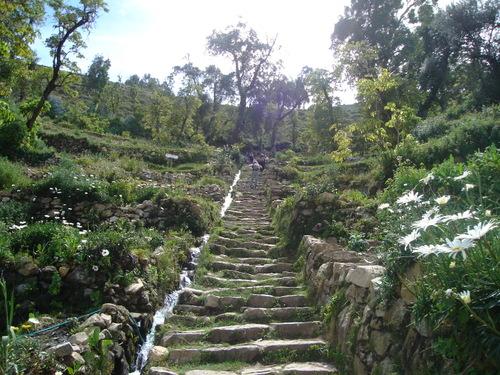 Inca_steps_2