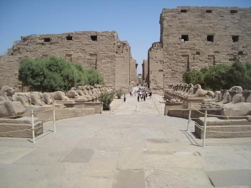 Karnak_sphynxes